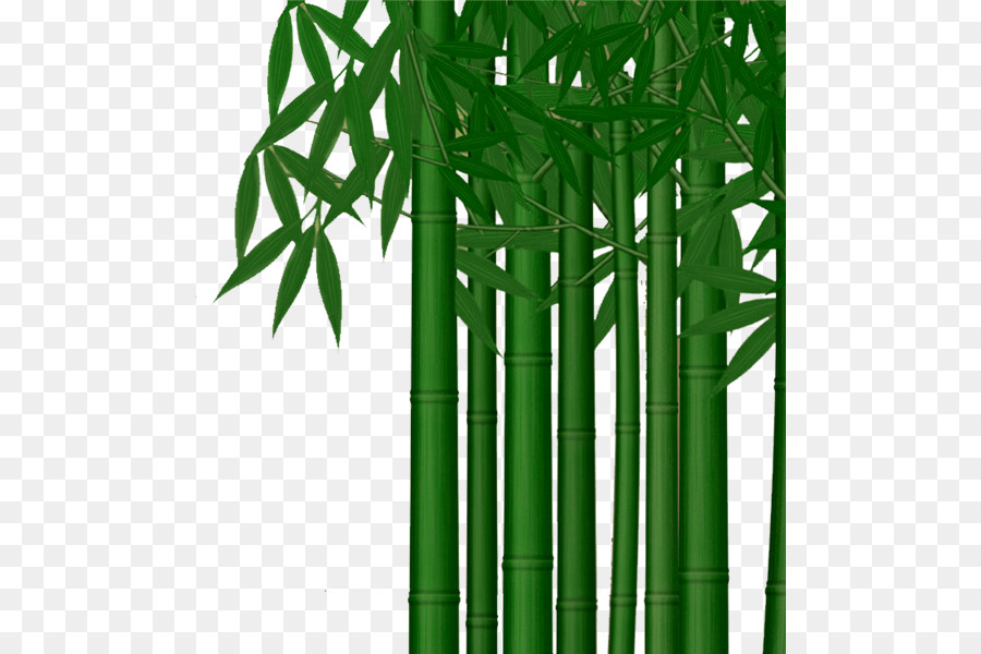 Poster download clip art. Bamboo clipart bamboo stem