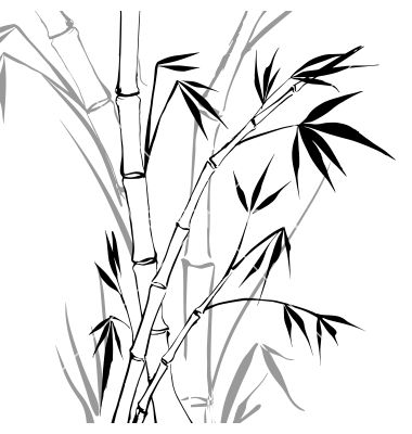 Vector artwork in drawing. Bamboo clipart black and white
