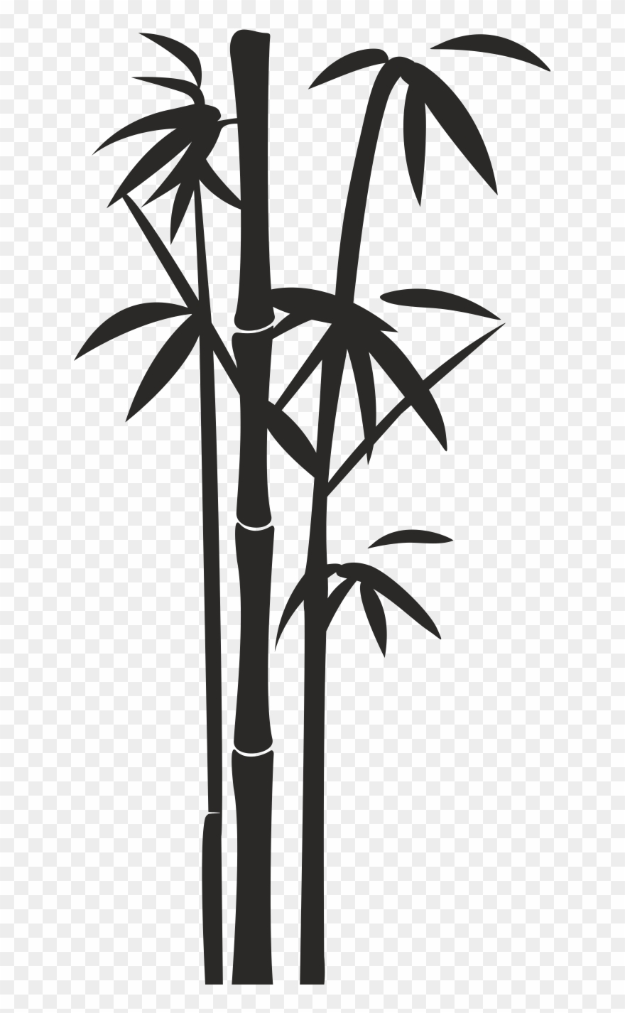 Png portable network graphics. Bamboo clipart black and white