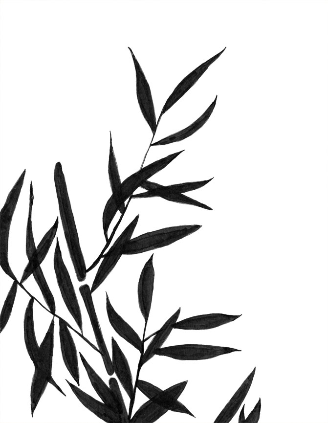 Bamboo clipart black and white. Clip art archives eclectic