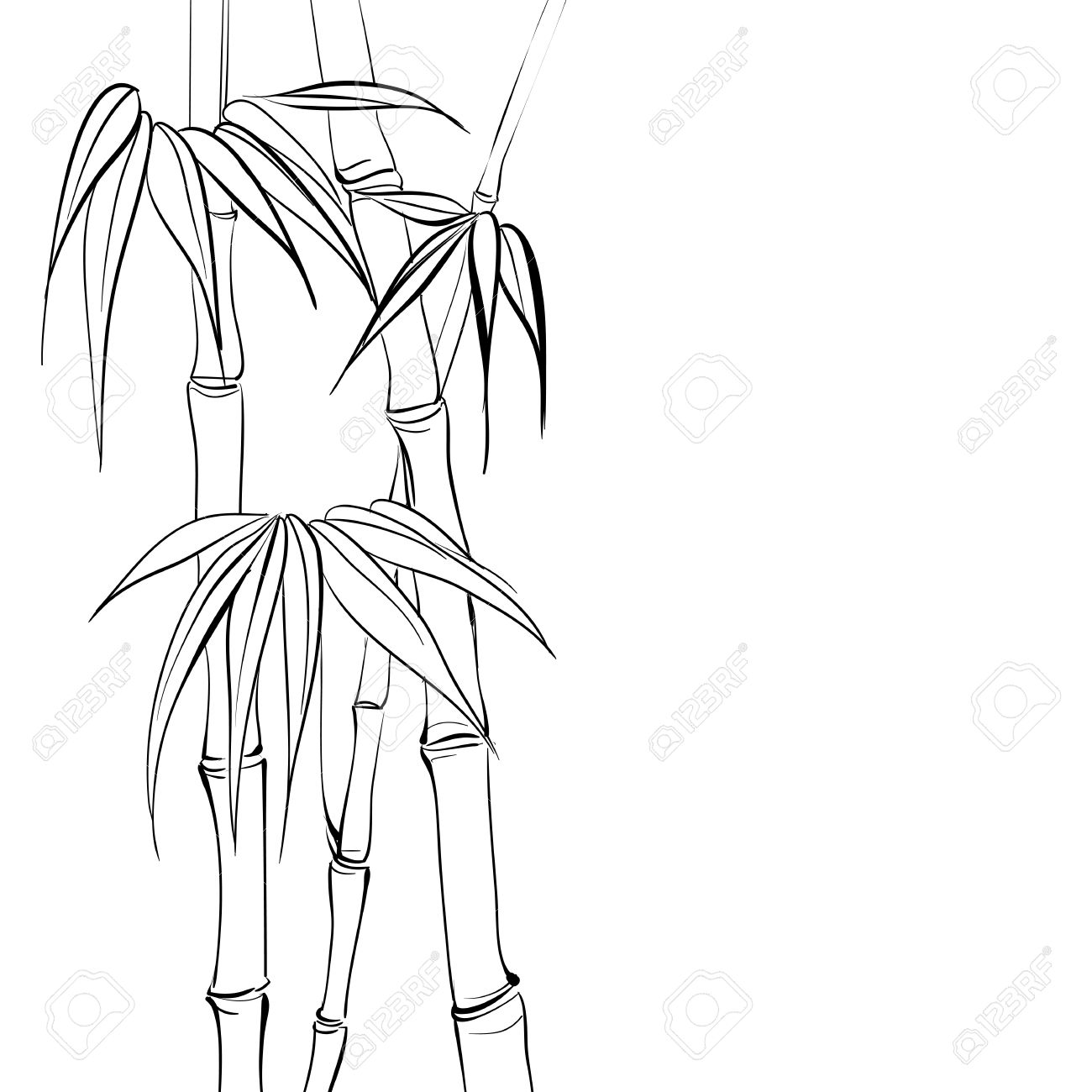 Bamboo clipart black and white.  collection of tree