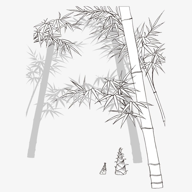 Sketch png image. Bamboo clipart black and white