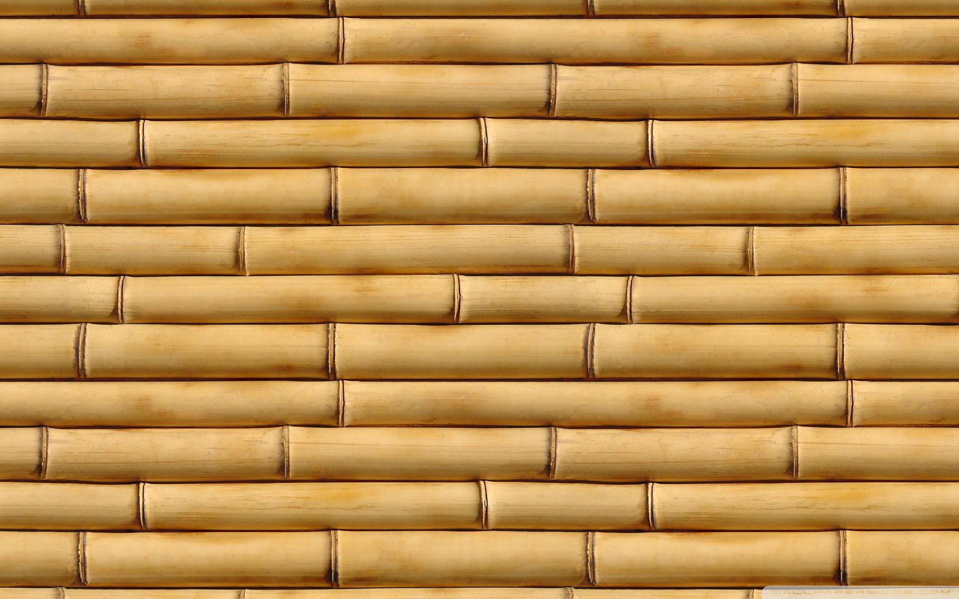 Sticks k hd desktop. Bamboo clipart brown bamboo