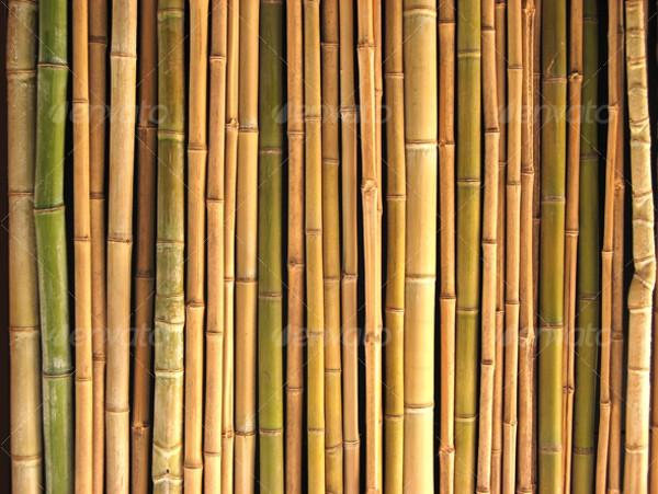 Bamboo clipart brown bamboo.  patterns psd vector