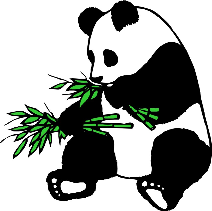 Bamboo clipart panda.  collection of eating