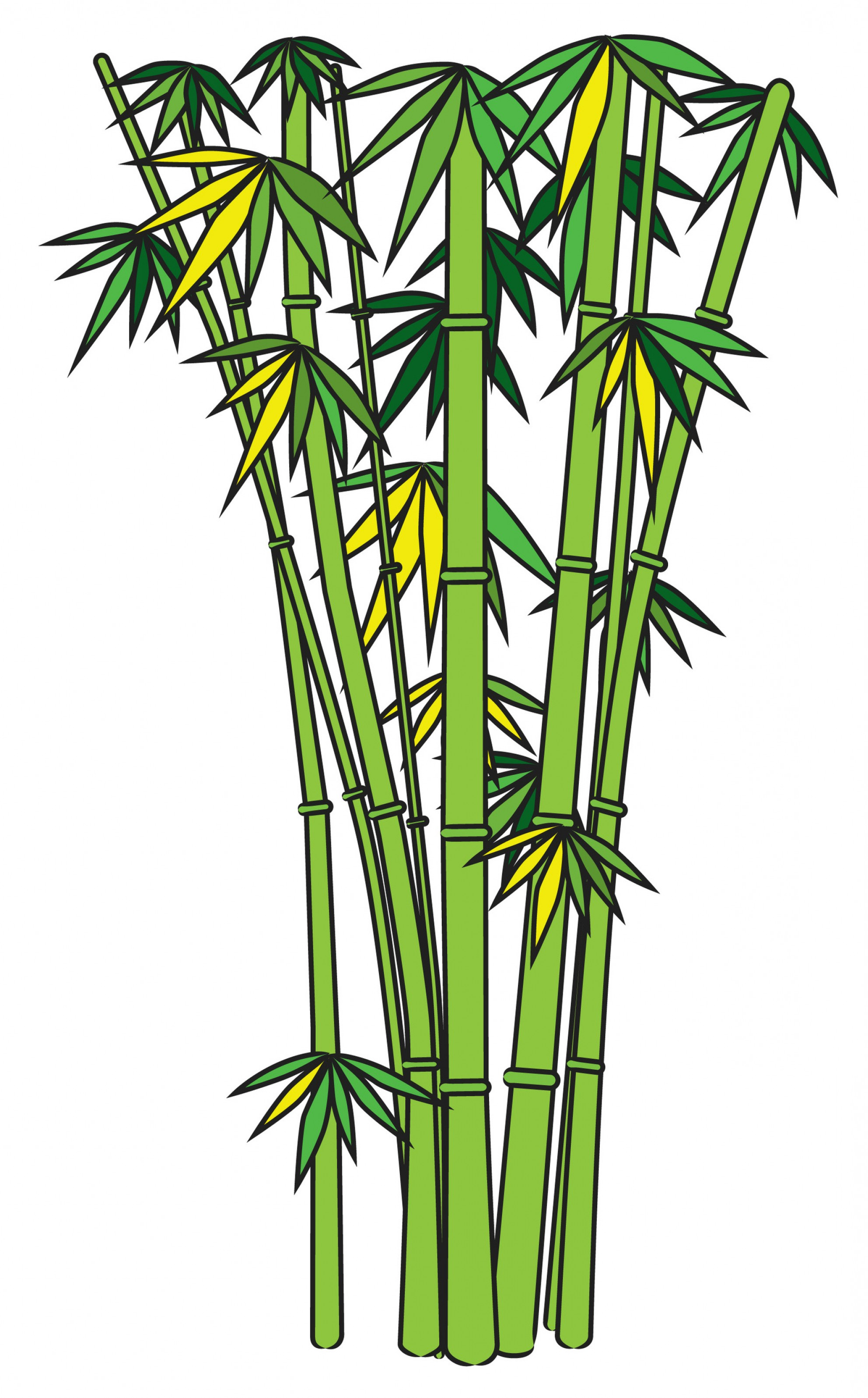 Tree clip art me. Bamboo clipart scroll