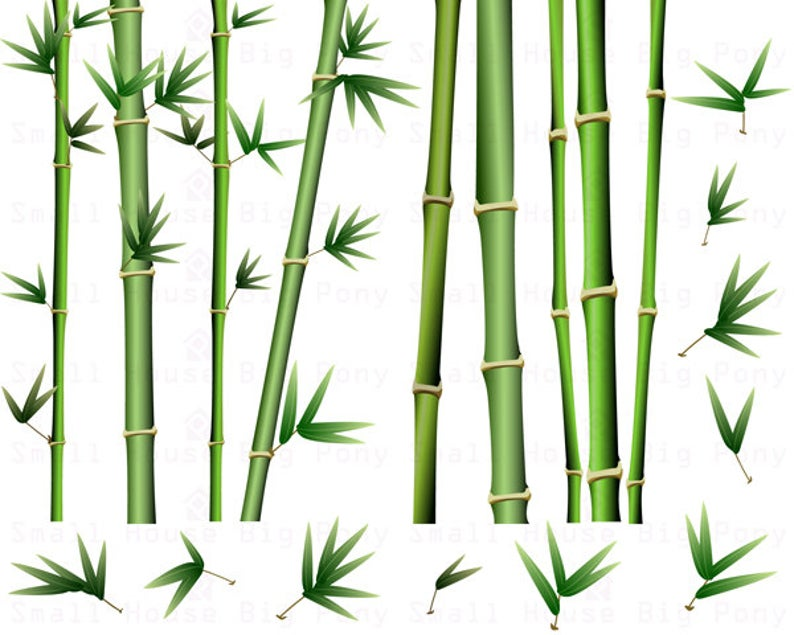Pack clip art and. Bamboo clipart short