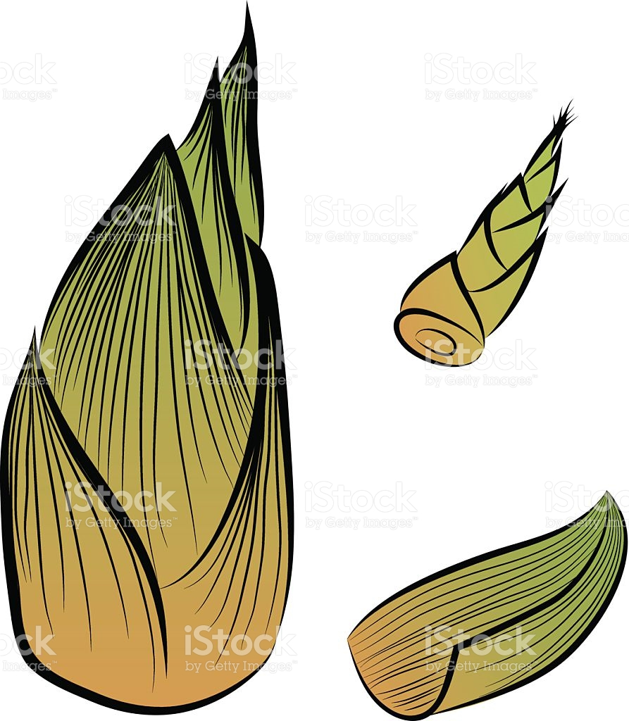 Bamboo clipart vector. Shoot pencil and in