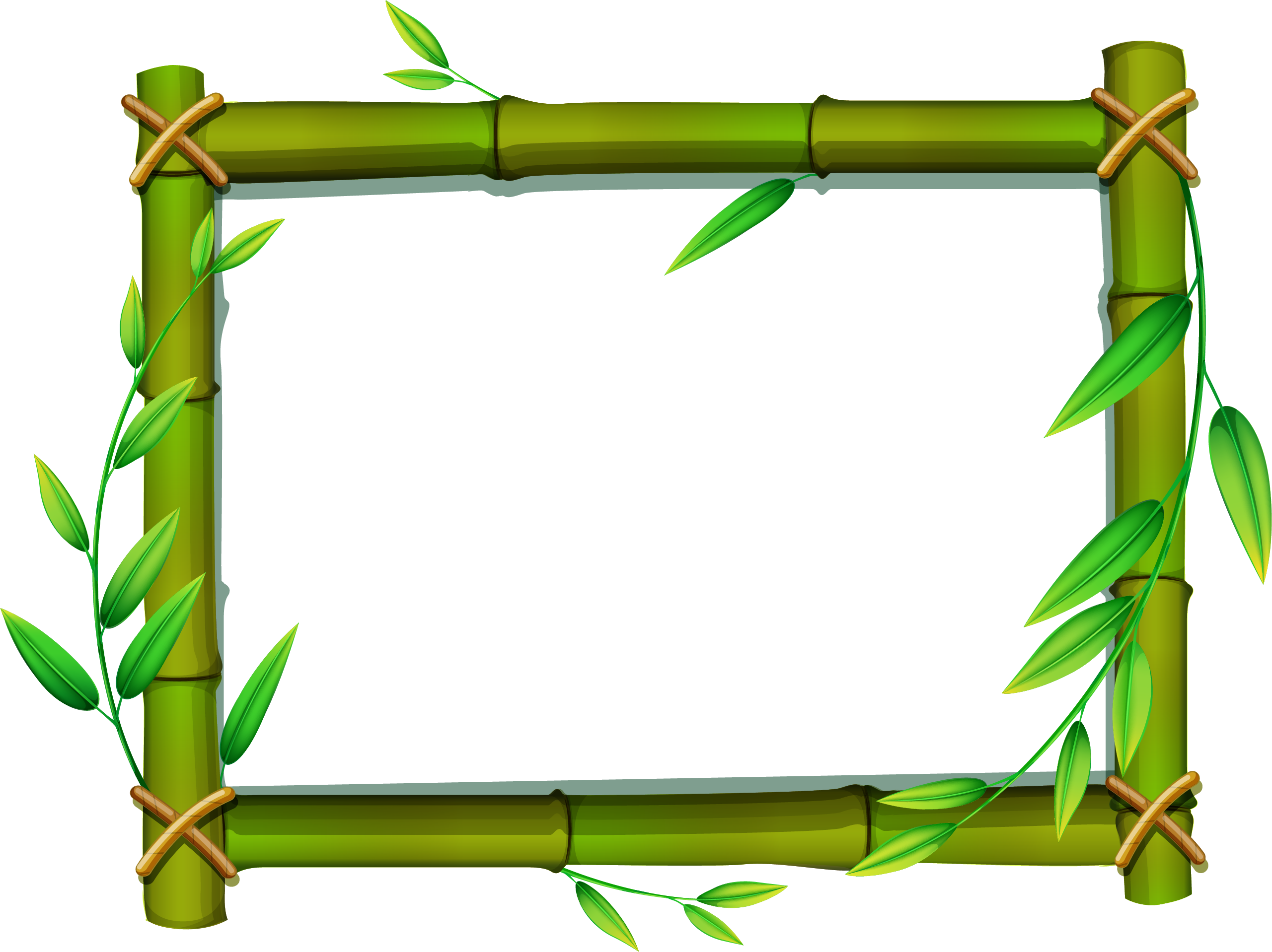 jpg black and. Bamboo frame png