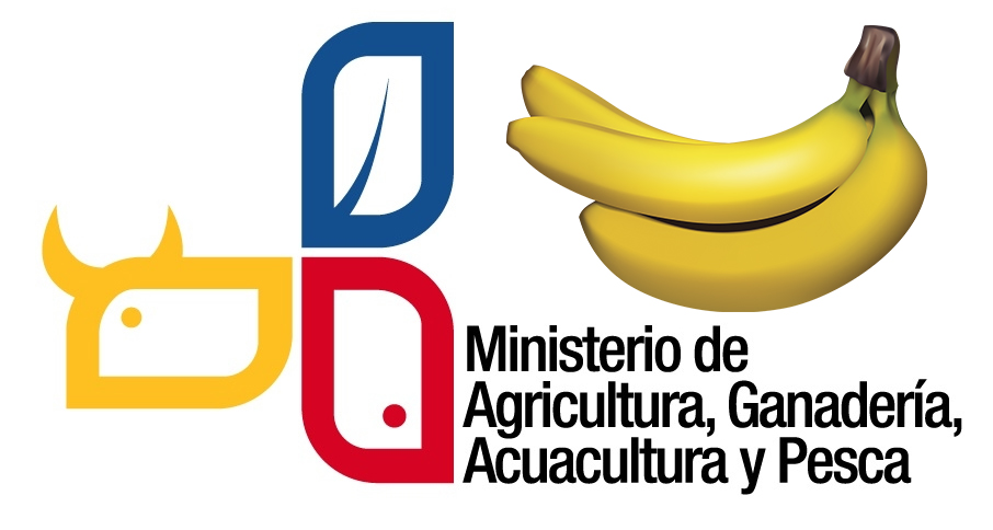Ukraine banastat new official. Banana clipart banaba