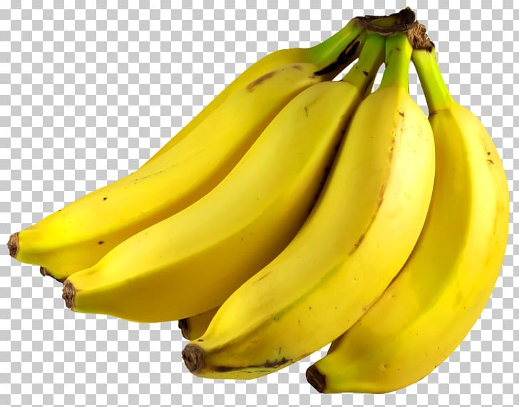 Png family bananas . Banana clipart bunch banana