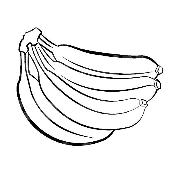 Bunch drawing at getdrawings. Banana clipart colored