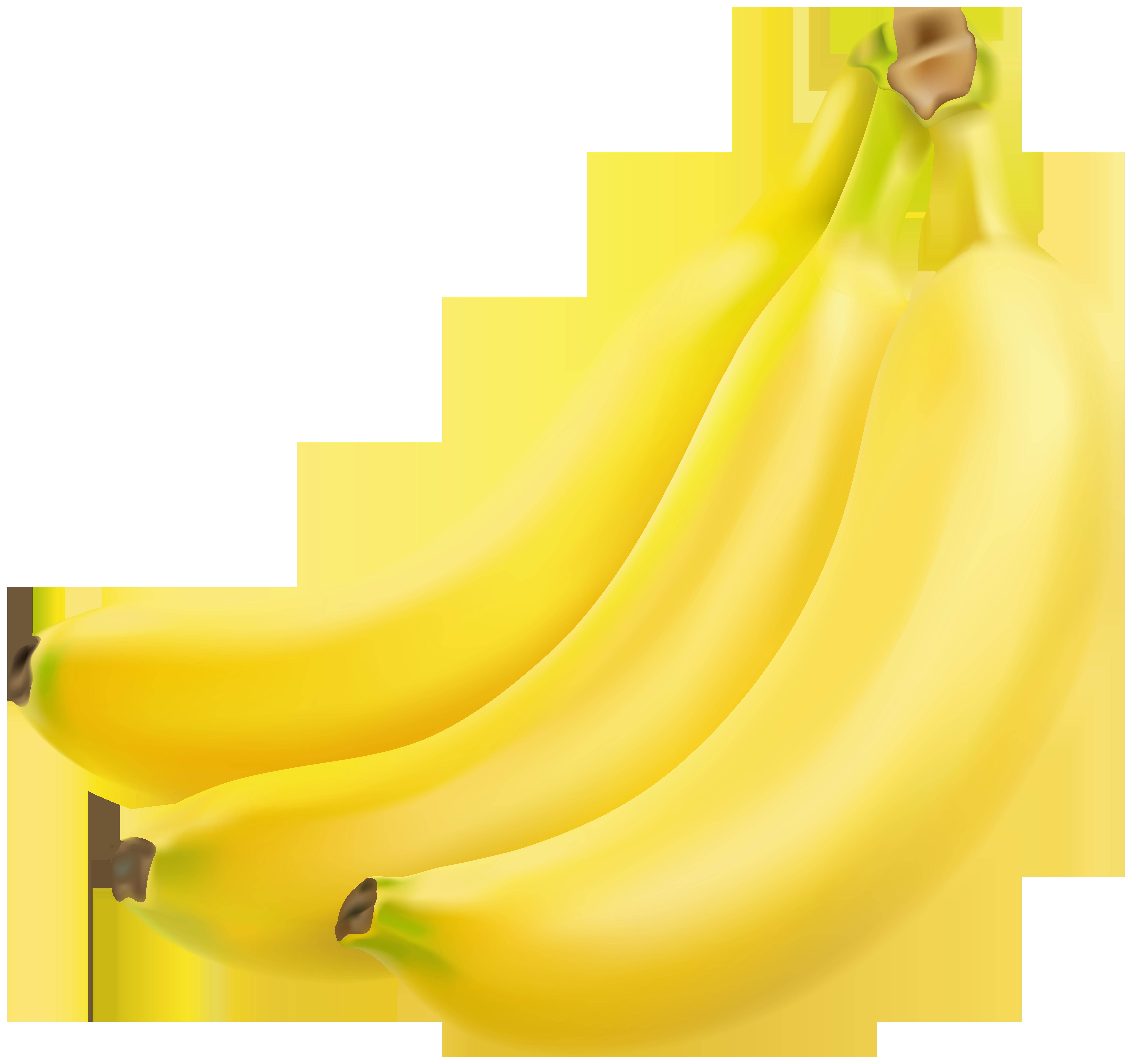 Banana clipart high quality. Bananas transparent image gallery