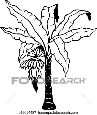 Incredible tree clip of. Banana clipart line art