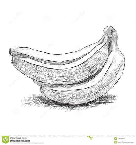 Vector . Banana clipart shadow