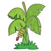 Station . Banana clipart tree