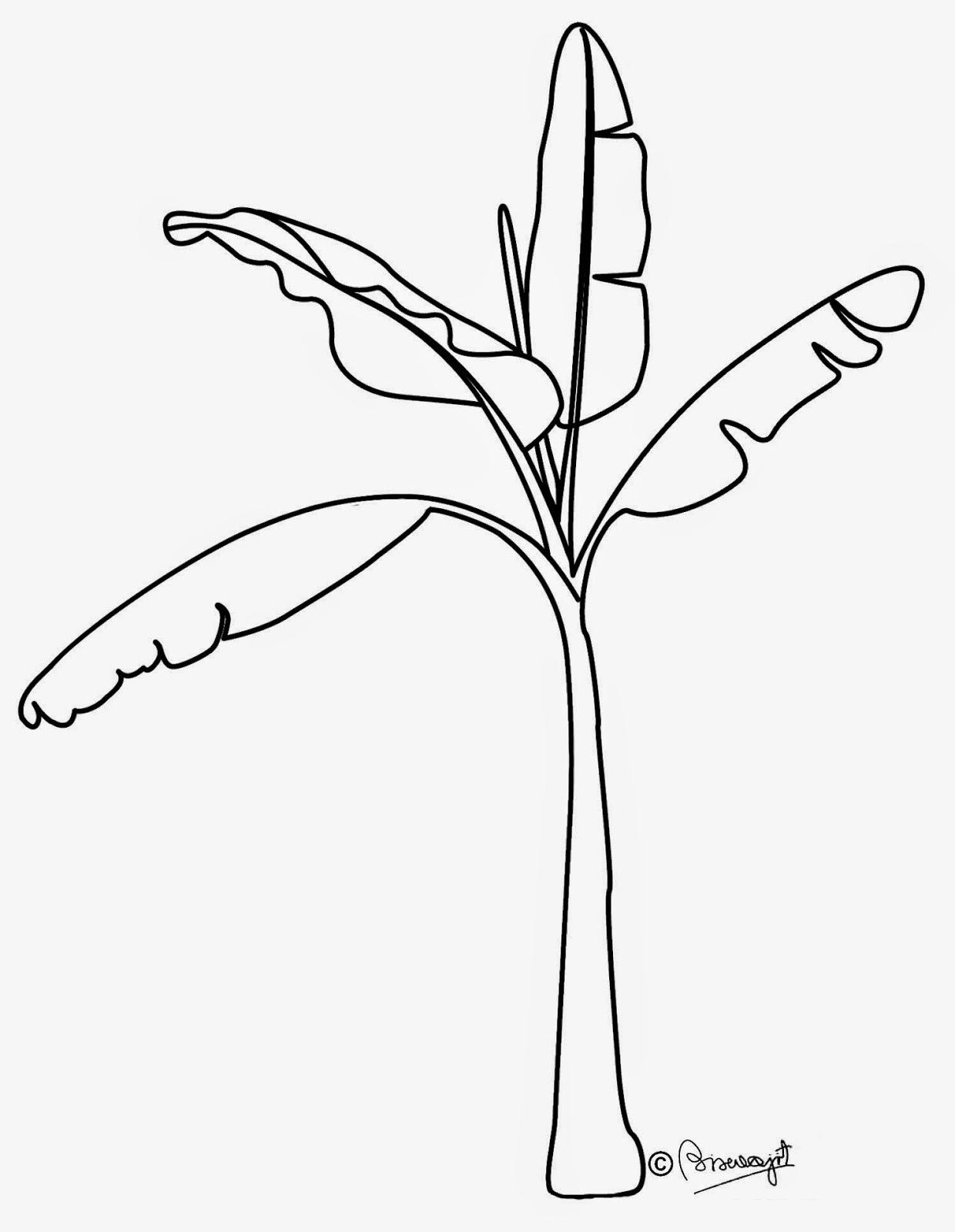 Black and white station. Banana clipart tree