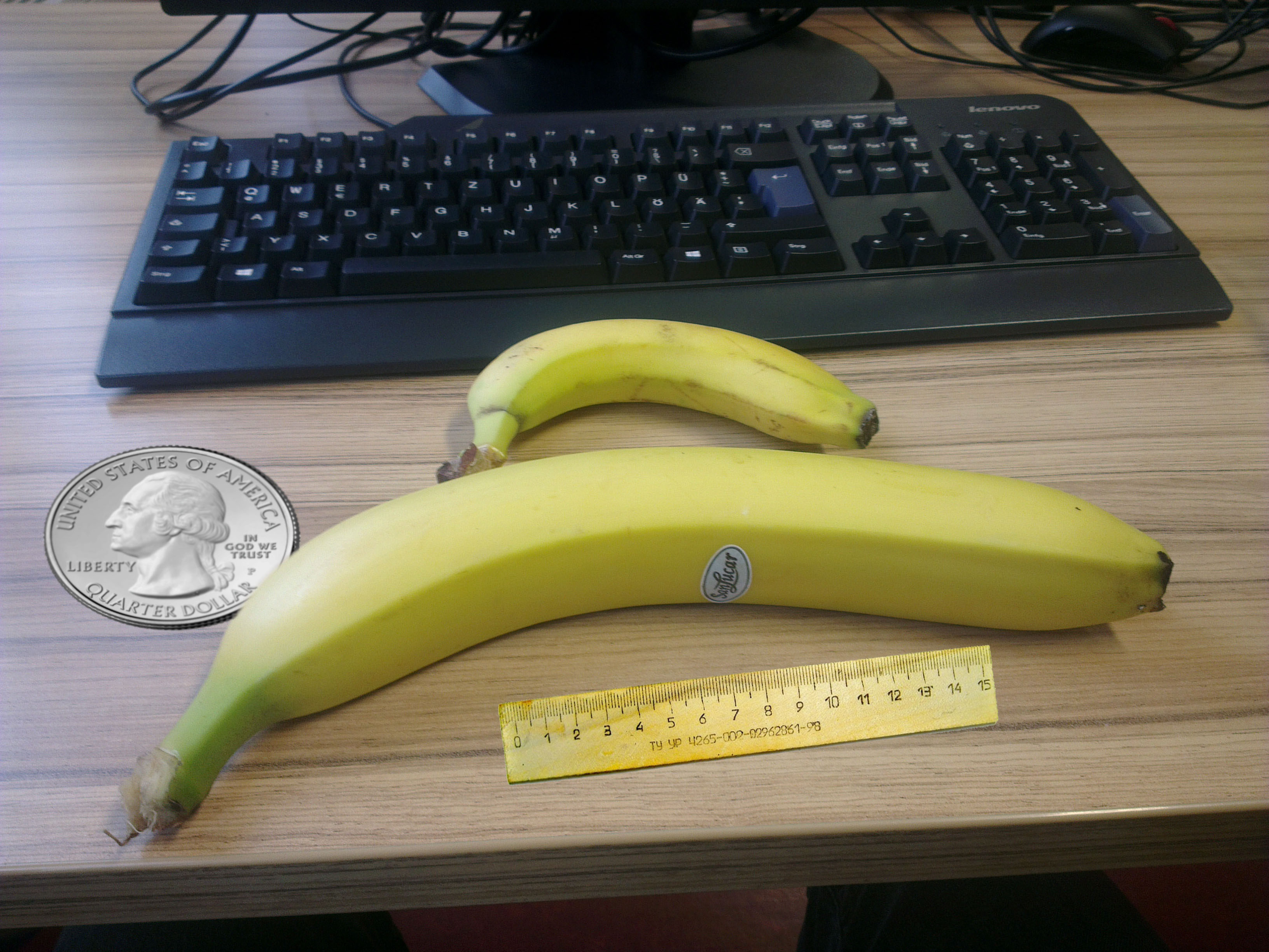 Today i ate a. Bananas clipart banaba