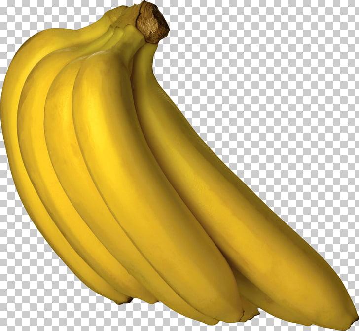 Cooking banana png free. Bananas clipart bannan