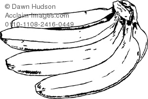 Banana clipart black and white. Bananas image