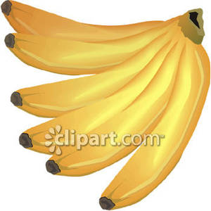 Big bunch of royalty. Bananas clipart bunches