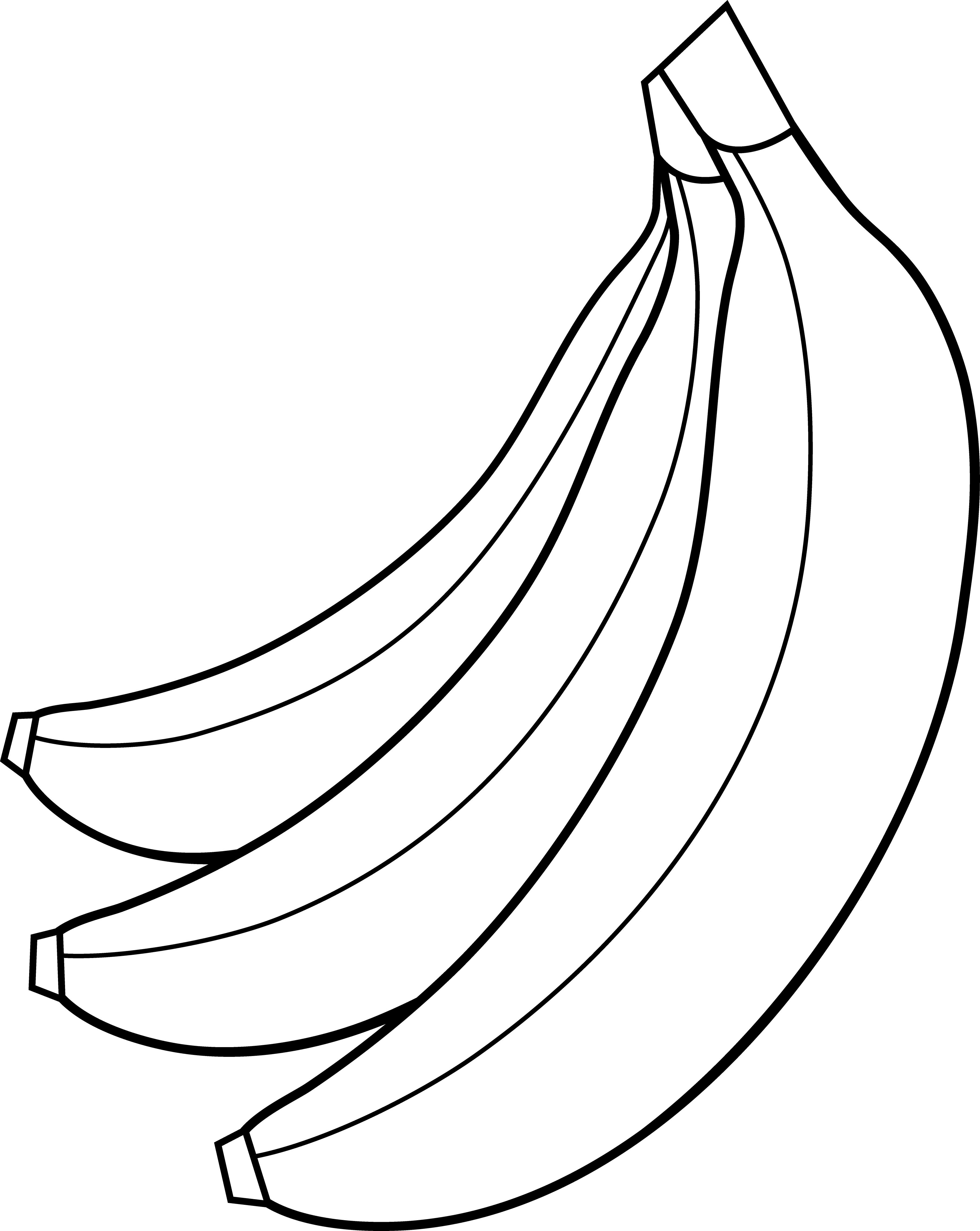 Colorable bunch of bananas. Clipart banana fruit vegetable