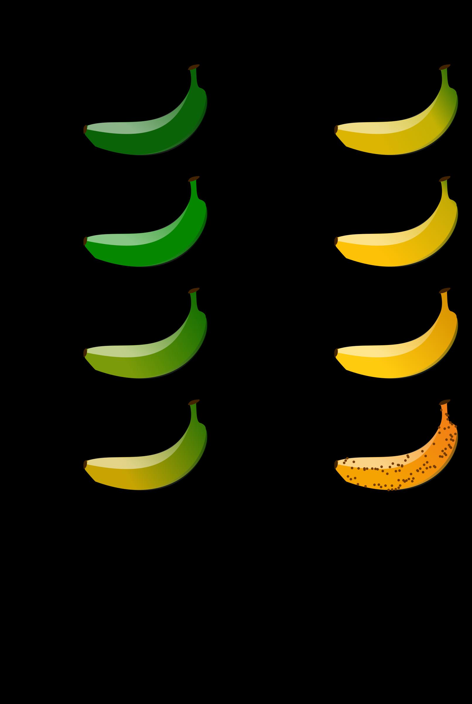 Color clipart color chart. Banana big image png
