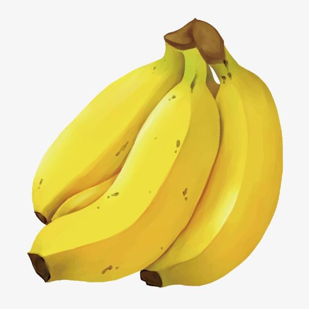 Hand drawn fruits sketch. Bananas clipart icon