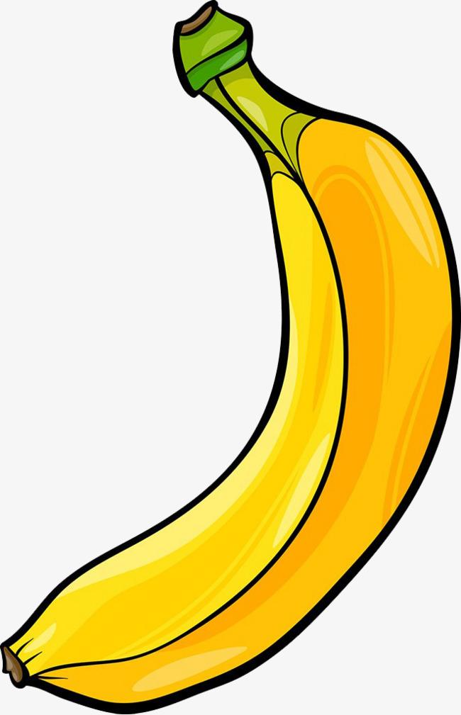 Banana picture fruit png. Bananas clipart illustration