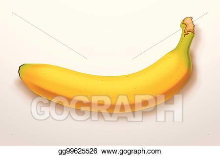 Bananas clipart shadow. Vector art banana with