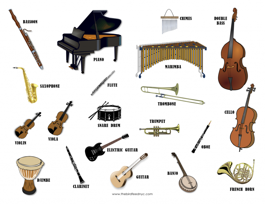 Musical instruments wonderful images. Banjo clipart classical music instrument