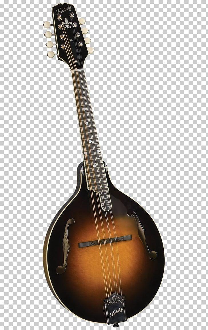 Banjo clipart mandolin. Musical instruments ukulele bluegrass