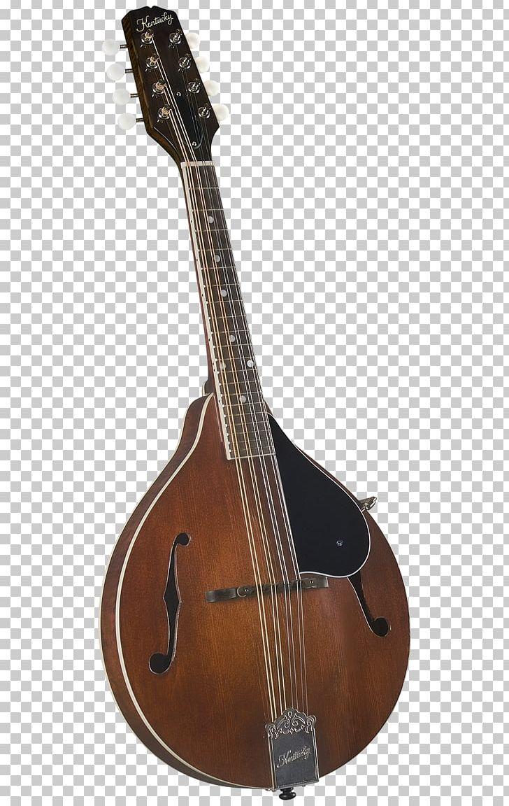 Mandolin ukulele kentucky musical. Banjo clipart sitar instrument