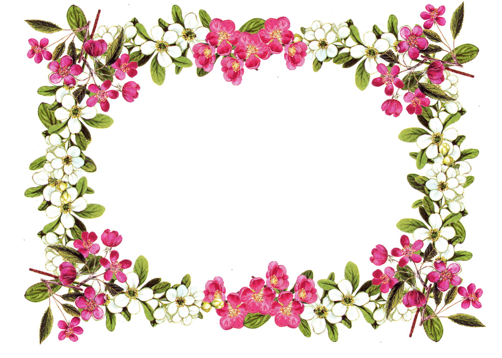 Banner clip art flower. Free printable borders digital