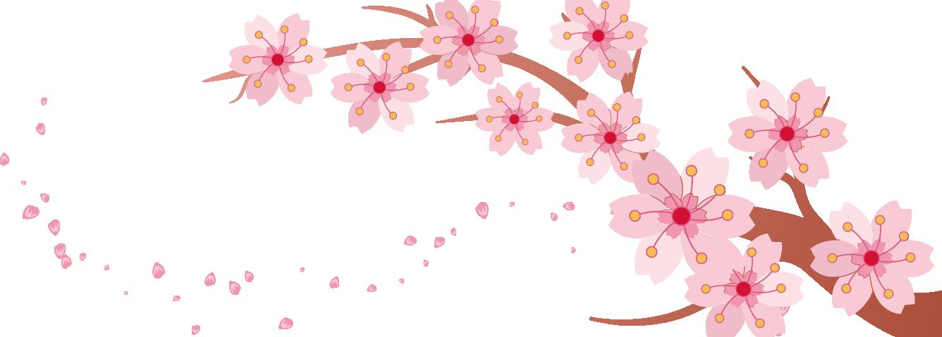 Banner clip art spring. Cherry blossom pink creative