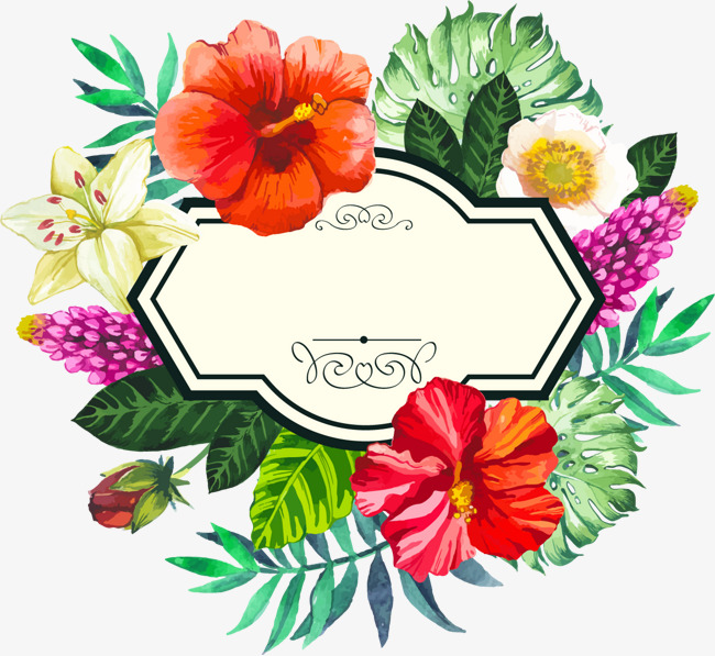 Banner clipart tropical. Hand painted watercolor borders