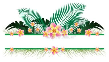 Banner clipart tropical.  best beach illustrations