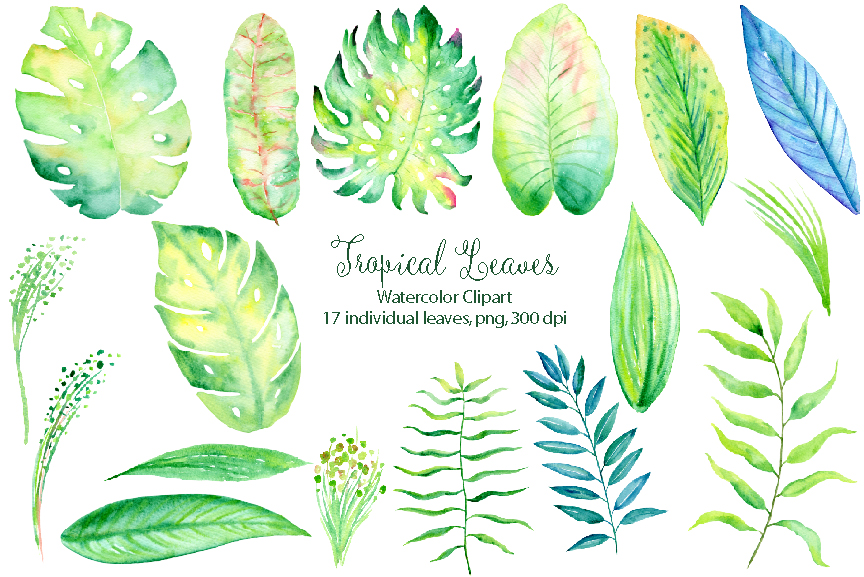 Watercolor collection by cornercroft. Banner clipart tropical