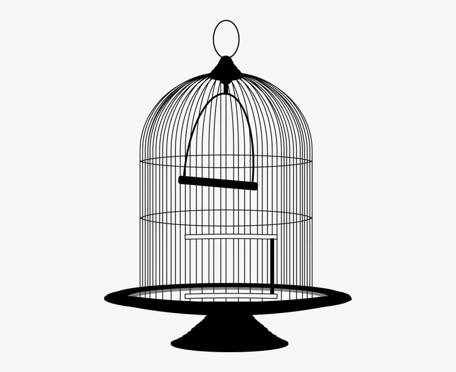 Bird birdcage png free. Cage clipart black and white
