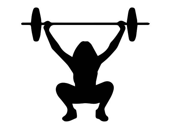 Fitness girl sexy exercise. Barbell clipart barbell crossfit