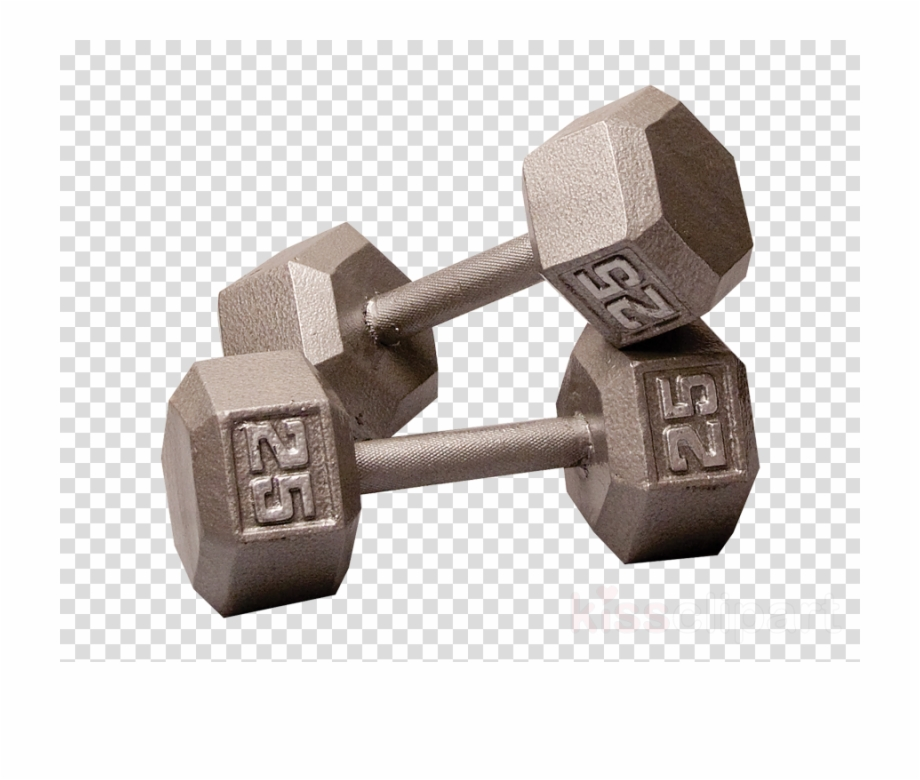 dumbbell weight training. Barbell clipart dumble