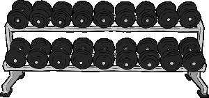 Dumbbell clip art at. Dumbbells clipart weight rack