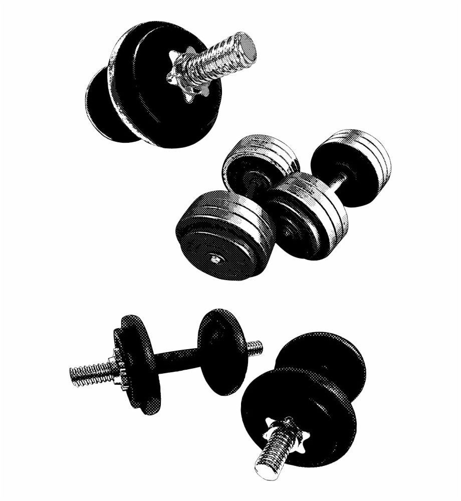 Dumbbell clipart gym equipment. Barbell fitness weightlifting