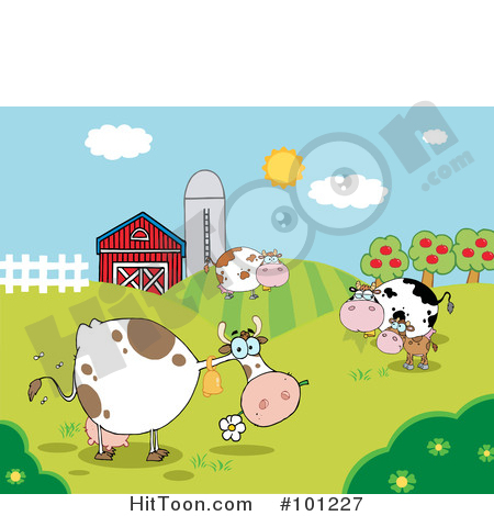 Pasture of grazing dairy. Barn clipart cow