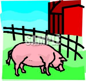 Barn clipart pig. Standing in a pasture