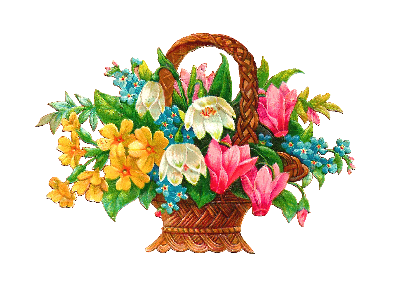 Antique images free flower. Flowers clipart beautiful