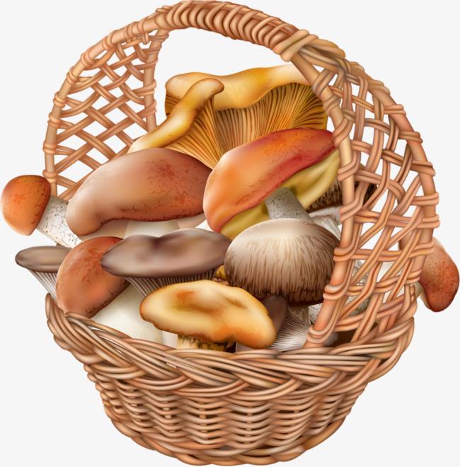 Filled with mushrooms png. Basket clipart mushroom