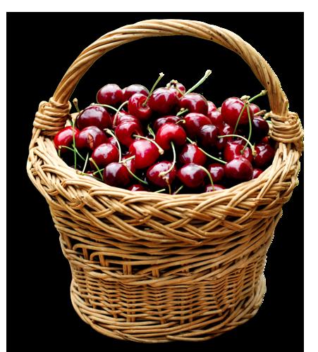 Cherry png best web. Basket clipart mushroom