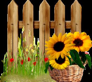 Basket fences collections pinterest. Fence clipart sunflower
