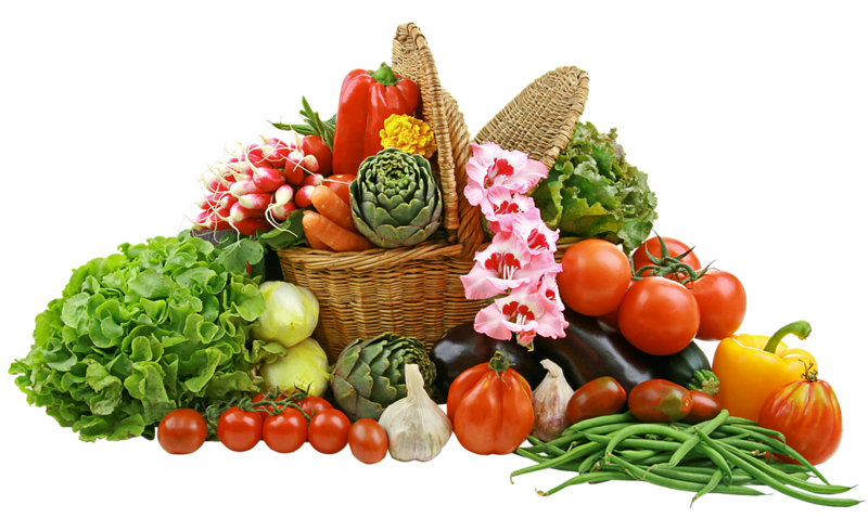 Gardening clipart crop production. Vegetable basket png picture